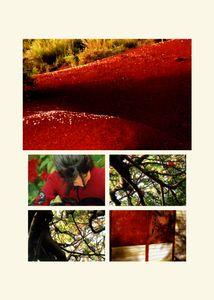 N°57 - Passage - Rouge carmin - 2008.