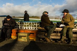 People are seen enjoying the sunny weather during the National Coursing Meeting in Clonmel, Co. Tipperary, Ireland. 30 Jan 2016.