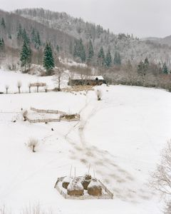 Smallholding on the road between Podu Dambovitei and Rucar. [January, 2018]