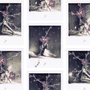 N°112 : ne m'oubliez pas - sakura