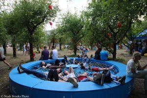 Atlas Weekend Apple Orchard