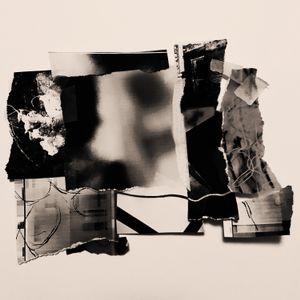 Shards 1