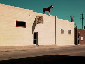 Horse on the roof. WY.