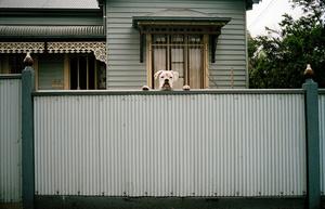 Foo was here, 2009