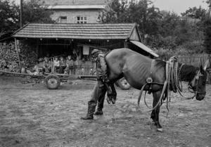 Średnia Wieś 1979.