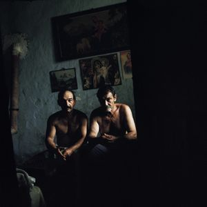 "untitled (from series ""Cikória"")"