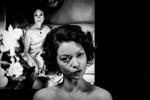Elanora impassive -The Testimony