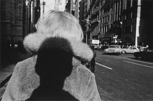 Carl Jacobs Fund, © 2006 Lee Friedlander. The Museum of Modern Art, New York