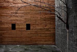 Doors XIII