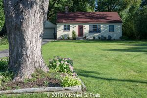 Tree and Blockhouse
