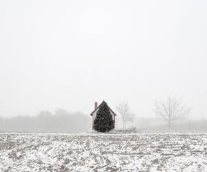 Tree and House, from the series Here, Anywhere, © Tamas Dezso. Honorable Mention, Lens Culture International Exposure Awards 2011