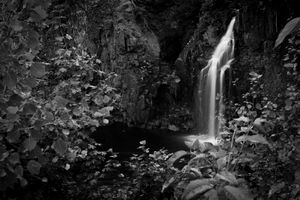 The water fall.