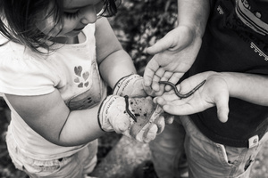 Holding Worms