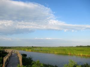 Kansas Wetlands-Daily Journeys-3
