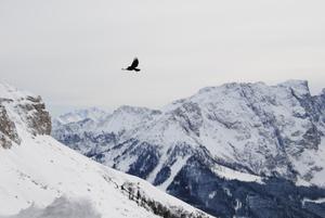 Flight in Dolomites