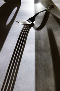 The Fork #4