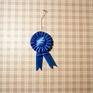 Winner, 2013