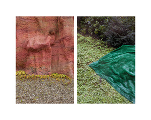 """""""Red rock & Green fabric"""""""