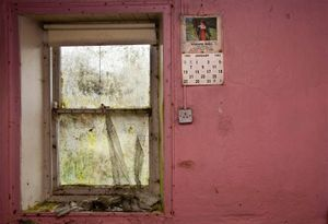 The Scullery window