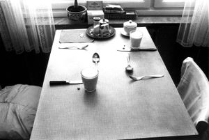 The morning table