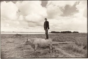 """Alan's Cow. From the exhibition """"Landscapes"""" © Tom Wood"""