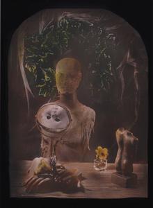 © Zelko Nedic, Things Of Desire     5x7 Tintype, Hand Coloured