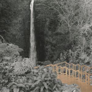 The Real Hike to Akaka Falls