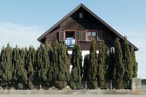 Dornbirn Houses  #7/ 2013