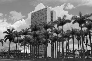 Congresso de Palmeiras.