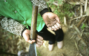 A female bamboo worker displays her hands after a day's work - Guangdong province, China.