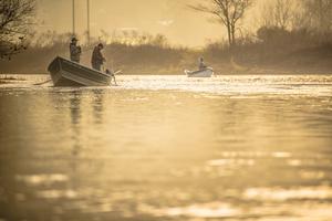 Dawn, Wilson River