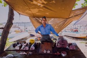 The Fisherman of Galle and his catch of the day