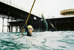 Evo catching a Mackerel