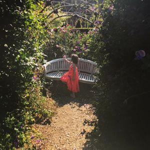 Sampling treasures in the secret garden