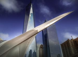 WTC and The Bird