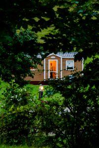 House behind leaves
