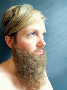 Beard, Hair Project 2018