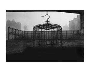 Shanghaï, 2008 © Klavdij Sluban