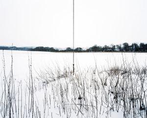 Connected #1 © Steve Meyler