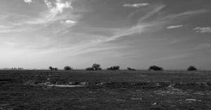 Traver Land