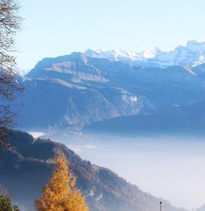 Autumn meets winter. .Rig, Switzerland - No Filters needed
