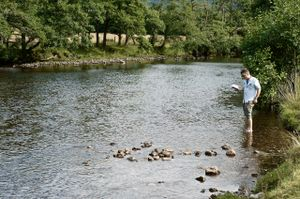 Bram Thomas Arnold performs Reading Particle Physics to a River as part of Actions For and Against Nature
