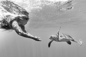 Naomi and sea turtle