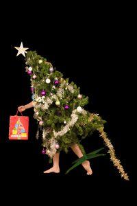 The Bringer of festive spirit Mum