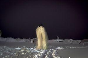 Fantasma de cuerpo presente II