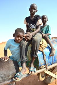 Kids from the local community on a donkey cart for water supply