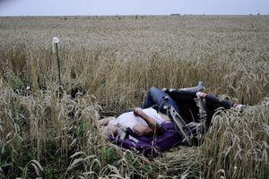 MH17, the martyr flight