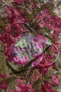 Discarded COVID-19 Mask with Spring Blossoms