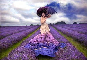 The Lavender Princess