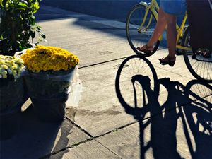 mums & cyclist